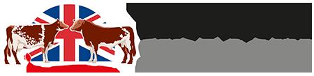 Shorthorn Sires UK